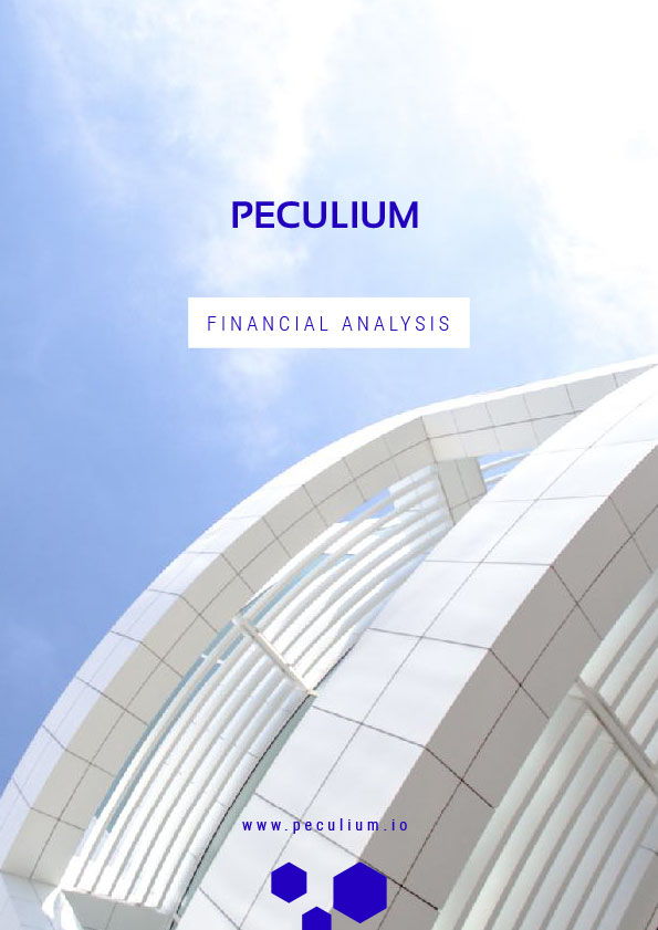 Financial analysis FRENCH